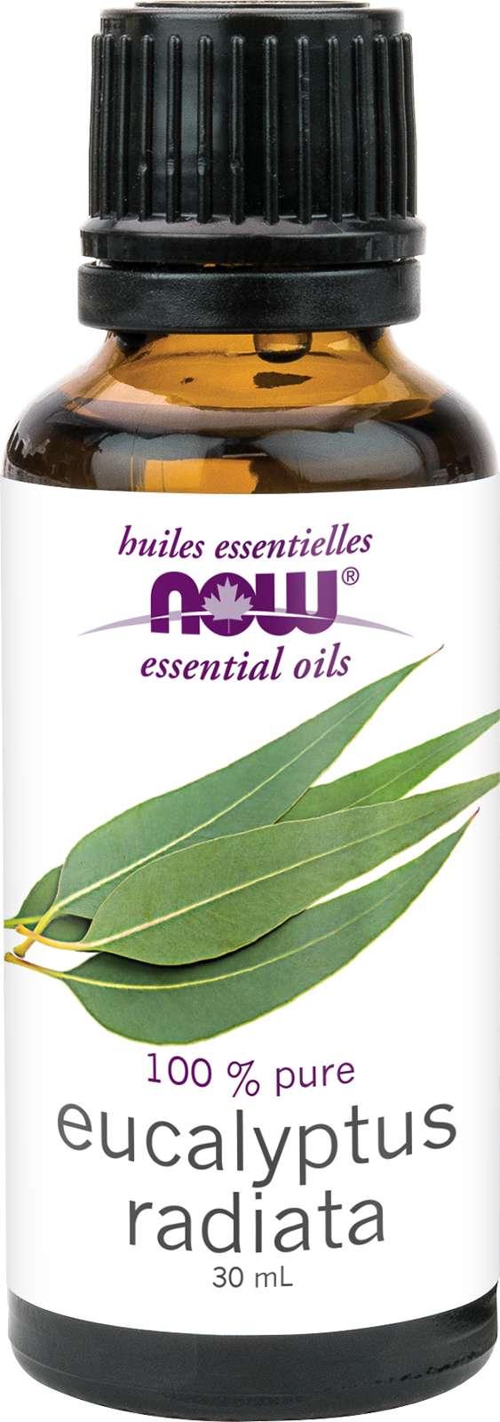 Eucalyptus Radiata Oil (Eucalyptus radiata) 30mL