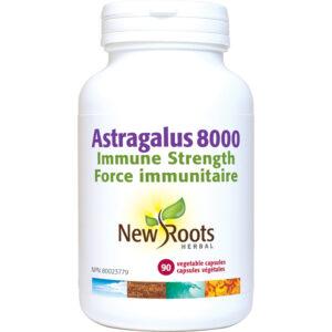 Astragalus 8000 90capsules